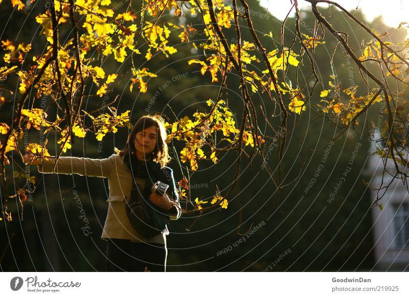 erschöpft III Frau Mensch Natur Jugendliche Herbst feminin Gefühle Park hell Stimmung Erwachsene Wetter Umwelt frei Müdigkeit Schönes Wetter