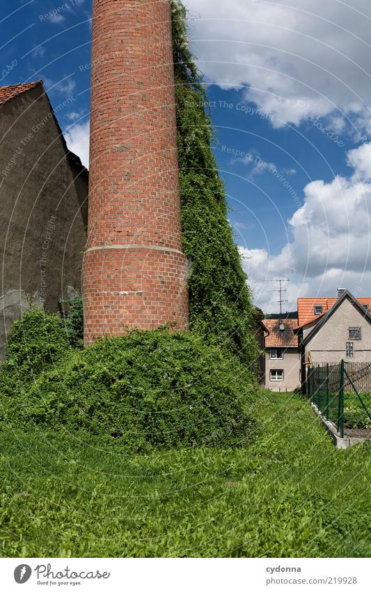 Abseits Lifestyle ruhig Umwelt Natur Himmel Sträucher Garten Wiese Dorf Haus Fabrik Fassade Wege & Pfade Einsamkeit Idylle Leben Nostalgie stagnierend