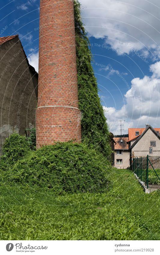 Abseits Natur Himmel ruhig Haus Einsamkeit Leben Wiese Garten Wege & Pfade Umwelt Zeit Fassade Lifestyle Fabrik Sträucher Wandel & Veränderung
