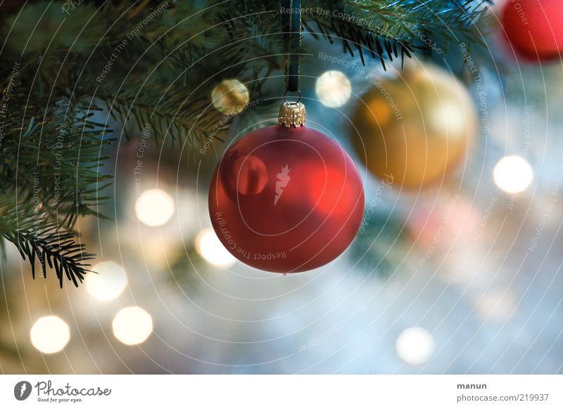 Hohlkörper Weihnachten & Advent schön Gefühle Lifestyle Feste & Feiern Stimmung glänzend leuchten Dekoration & Verzierung Fröhlichkeit Lebensfreude Symbole & Metaphern Kitsch Frieden Weihnachtsbaum Kugel