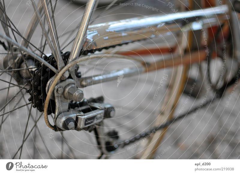 Was uns antreibt alt braun Fahrrad Freizeit & Hobby authentisch stehen Lifestyle Coolness Technik & Technologie Rad Kette stagnierend Zahnrad old-school Detailaufnahme Gangschaltung