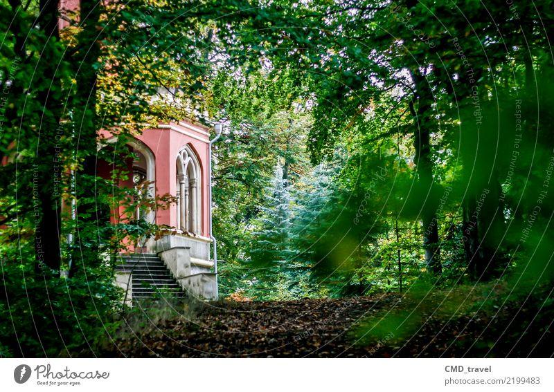 Aussichtsturm Karl IV - Karlsbad (Karlovy Vary) Natur Ferien & Urlaub & Reisen Stadt Baum ruhig Wald Berge u. Gebirge Leben Umwelt Garten Tourismus Ausflug