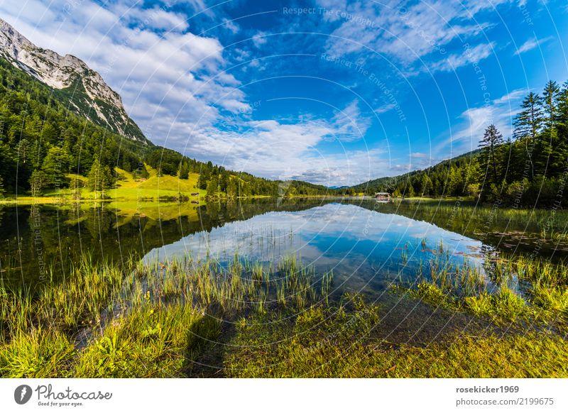 Alpensee Himmel Natur Ferien & Urlaub & Reisen Sommer schön Wasser Landschaft Erholung Wolken Ferne Wald Berge u. Gebirge Umwelt Wege & Pfade natürlich Freiheit