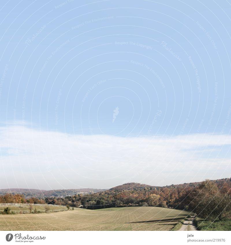 herbstlandschaft Ausflug Natur Landschaft Himmel Herbst Pflanze Baum Wiese Feld Wald Hügel Wege & Pfade blau grün Aussicht Ferne Erholungsgebiet Farbfoto