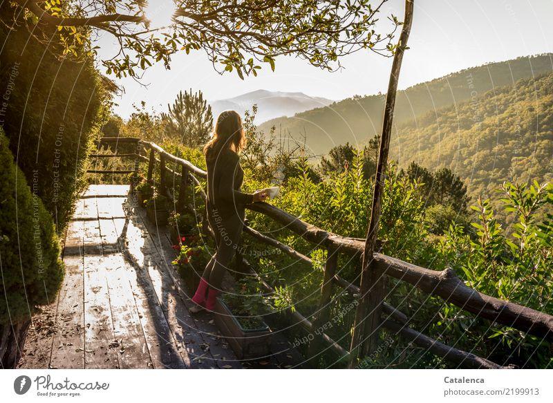 Kaffeegenuss Getränk Tasse harmonisch Zufriedenheit Terrasse feminin 1 Mensch Natur Landschaft Herbst Schönes Wetter Baum Sträucher Blatt Wald Hügel beobachten
