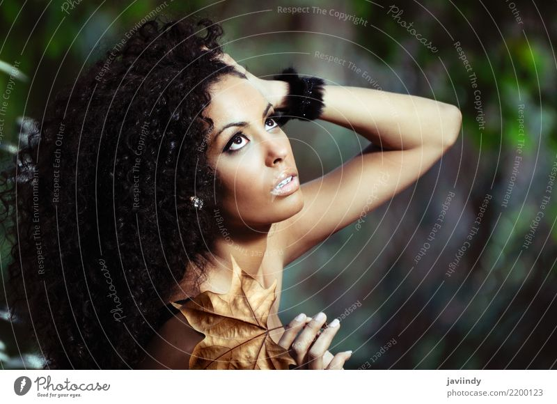 Schwarze Frau mit Herbstblatt in der Hand. schön Körper Haare & Frisuren Haut Gesicht Schminke Mensch feminin Junge Frau Jugendliche Erwachsene 1 18-30 Jahre