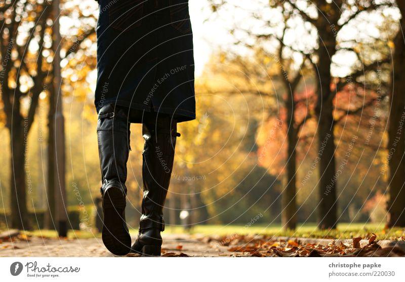 Fort-Schritt Freizeit & Hobby feminin Beine 1 Mensch Herbst Schönes Wetter Blatt Park Wege & Pfade Rock Stiefel Erholung gehen Unendlichkeit Willensstärke