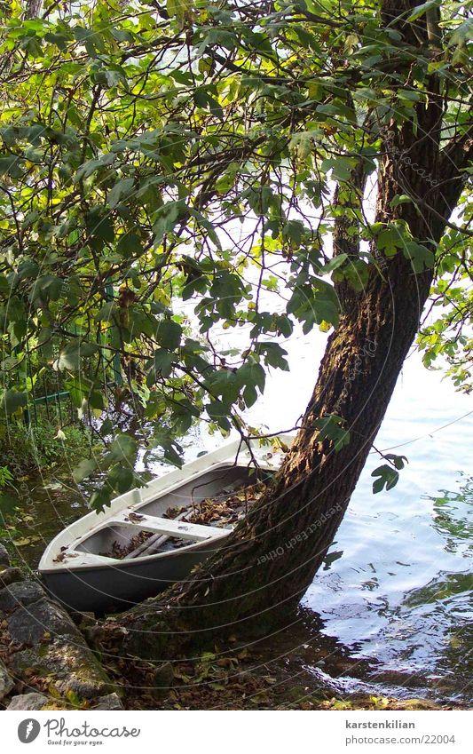 Stilleben Natur Wasser alt Baum Meer ruhig Wasserfahrzeug Küste Romantik Baumstamm Anlegestelle Ruderboot Kahn Rastplatz