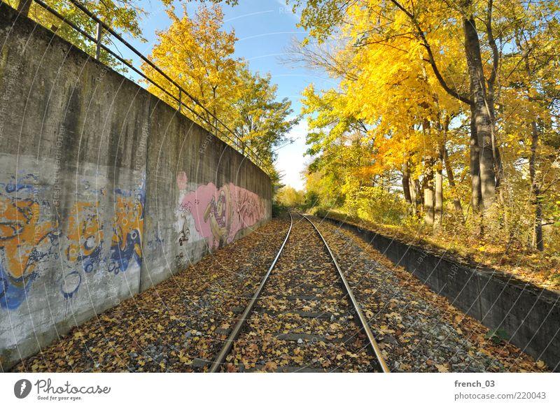 der Winter kommt! Natur Himmel Baum blau Blatt gelb Farbe kalt Herbst Mauer Graffiti Stimmung Umwelt Sträucher Gleise leuchten