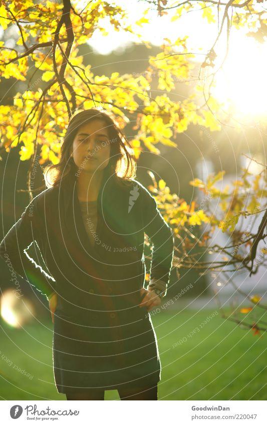 """""""hast du's bald?"""" Mensch feminin Junge Frau Jugendliche Erwachsene Umwelt Natur Sonne Sonnenaufgang Sonnenuntergang Sonnenlicht Herbst Park Gefühle Stimmung"""