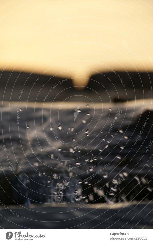 Schwarza 2 Natur Wasser ruhig nass Wassertropfen ästhetisch Sauberkeit natürlich Schönes Wetter Flussufer spritzen