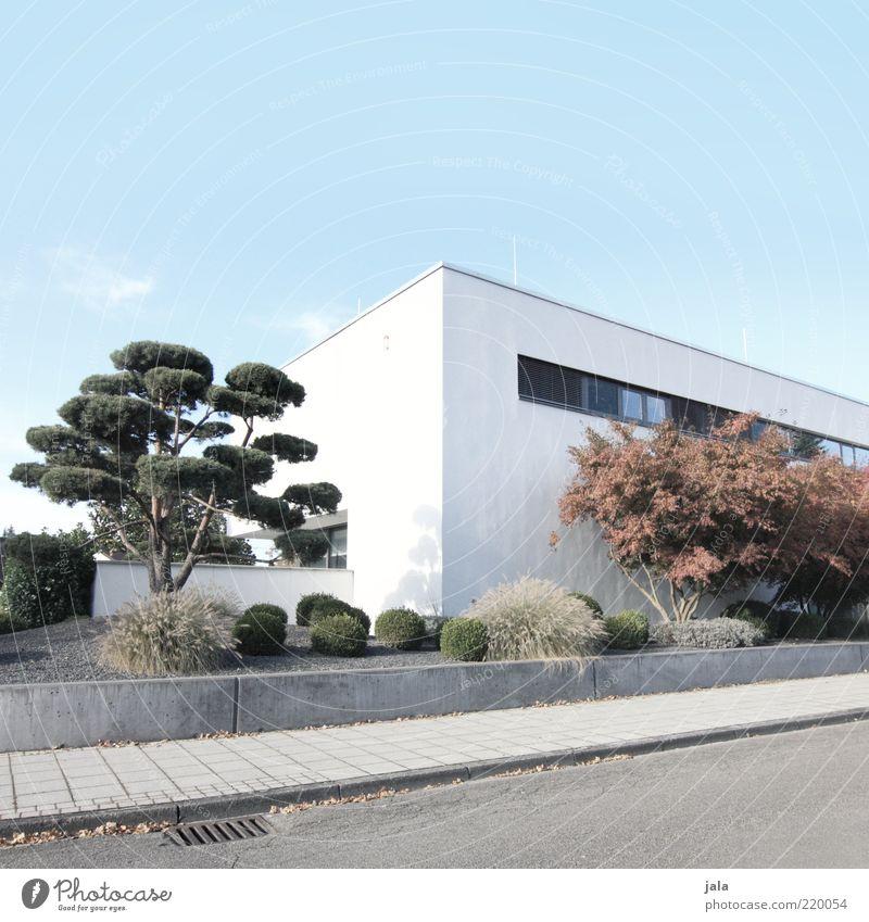 designerhaus Himmel weiß Baum grün blau Pflanze Haus Straße Gebäude Architektur modern Sträucher Bürgersteig Bauwerk Gully