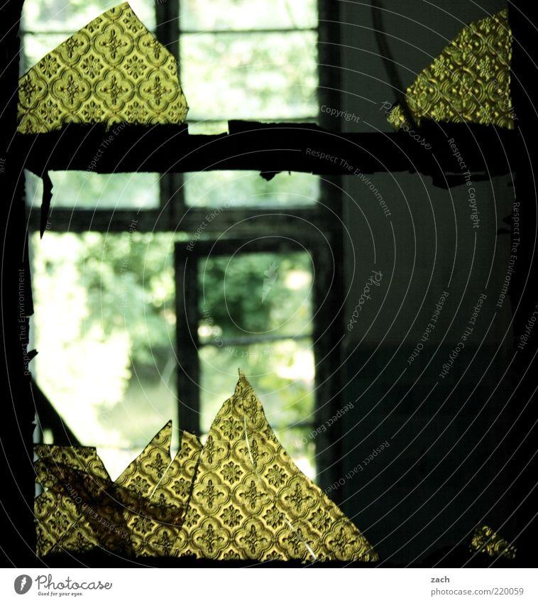 Durchblick Haus Hütte Ruine Fenster Tür Glas alt dreckig dunkel kaputt trist gelb grün Verfall Zerstörung Scherbe Fensterscheibe Farbfoto Gedeckte Farben