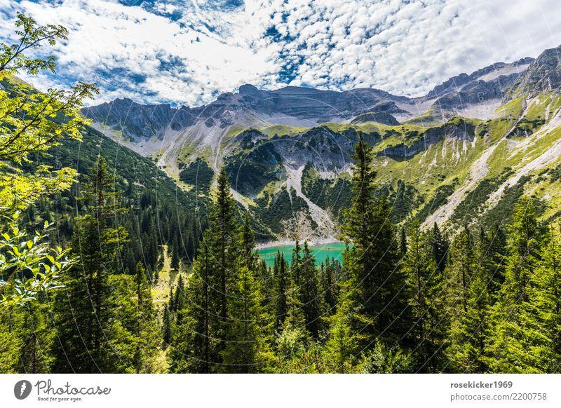 Alpenpanorama Ferien & Urlaub & Reisen Tourismus Ausflug Abenteuer Ferne Freiheit Sommer Sommerurlaub Berge u. Gebirge wandern Wolken Felsen Menschenleer