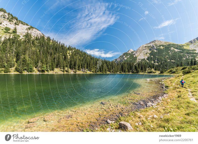 Alpensee Mensch Himmel Natur Ferien & Urlaub & Reisen schön Wasser Landschaft Erholung ruhig Wald Berge u. Gebirge Erwachsene kalt Gesundheit Wege & Pfade