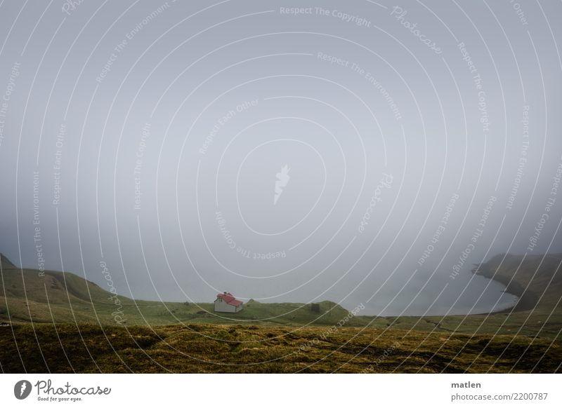 Traumbucht Landschaft Luft Wasser Himmel Frühling schlechtes Wetter Nebel Gras Wiese Berge u. Gebirge Küste Strand Bucht Meer Einfamilienhaus dunkel braun grau