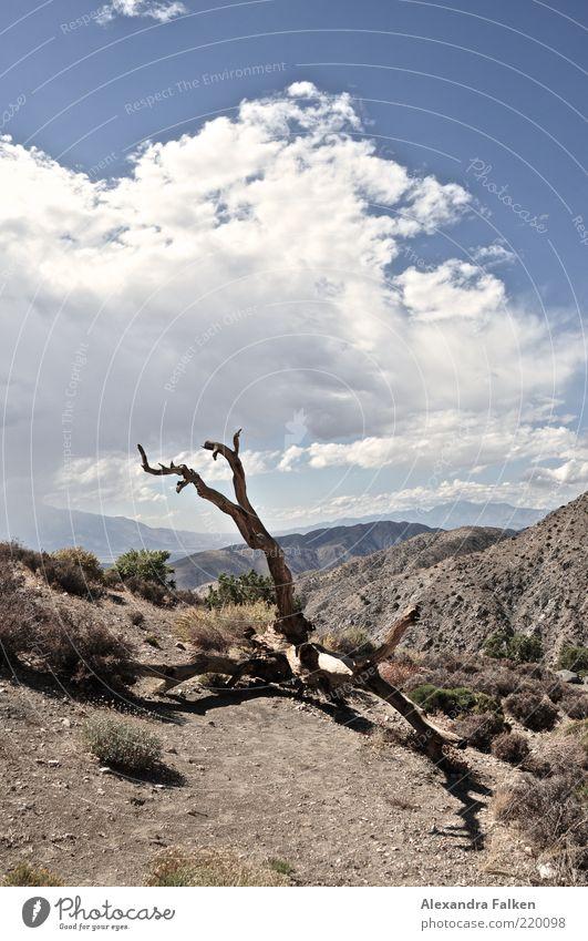 Ein Glas Wasser, bitte! Natur Himmel Baum Pflanze Sommer Wolken Ferne Berge u. Gebirge Sand Landschaft Luft Wetter Umwelt Felsen Erde ästhetisch