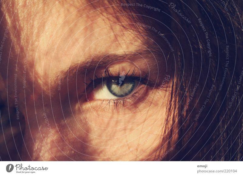 DU feminin Junge Frau Jugendliche Haare & Frisuren Auge 1 Mensch 18-30 Jahre Erwachsene Coolness dunkel exotisch rebellisch wild weich blau direkt intensiv