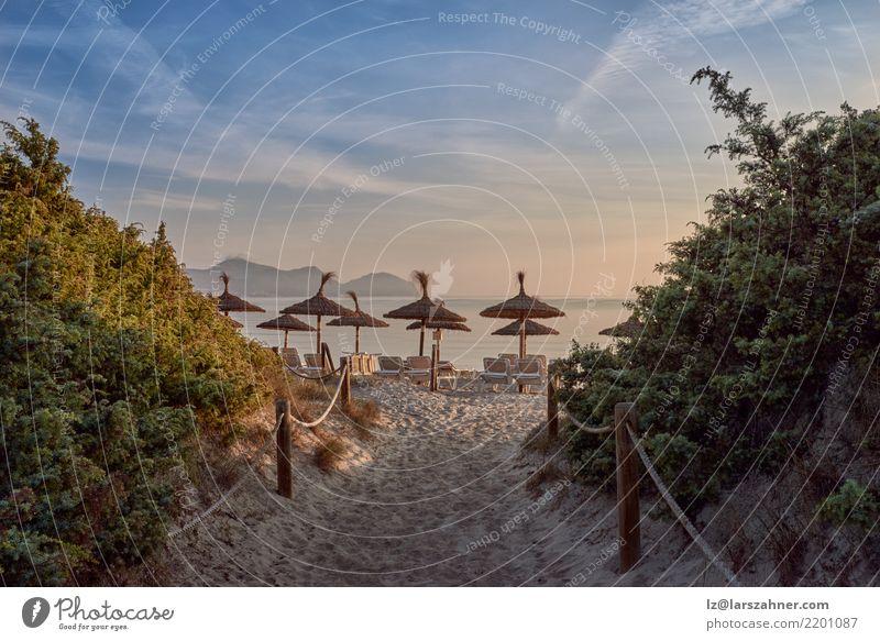 Tropischer Sonnenuntergang auf einem Erholungsortstrand Ferien & Urlaub & Reisen Tourismus Strand Meer Sand Himmel Wege & Pfade hässlich blau orange
