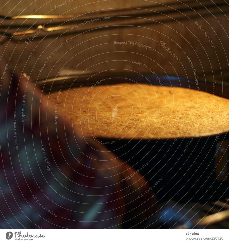 nur noch die Schokoglasur... Ernährung Kuchen Backwaren Metall Duft genießen heiß lecker süß gelb Geburtstagstorte Nusskuchen Teigwaren rund Backform Torte