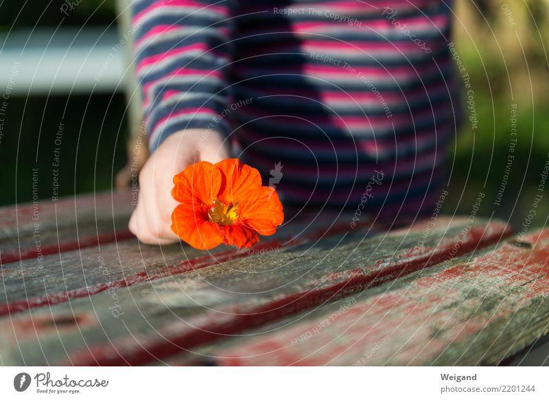 Muttertag Oktoberfest Erntedankfest Kind Kleinkind Mädchen Kindheit festhalten Duft fantastisch Freundlichkeit Fröhlichkeit Gesundheit rot Akzeptanz Vertrauen
