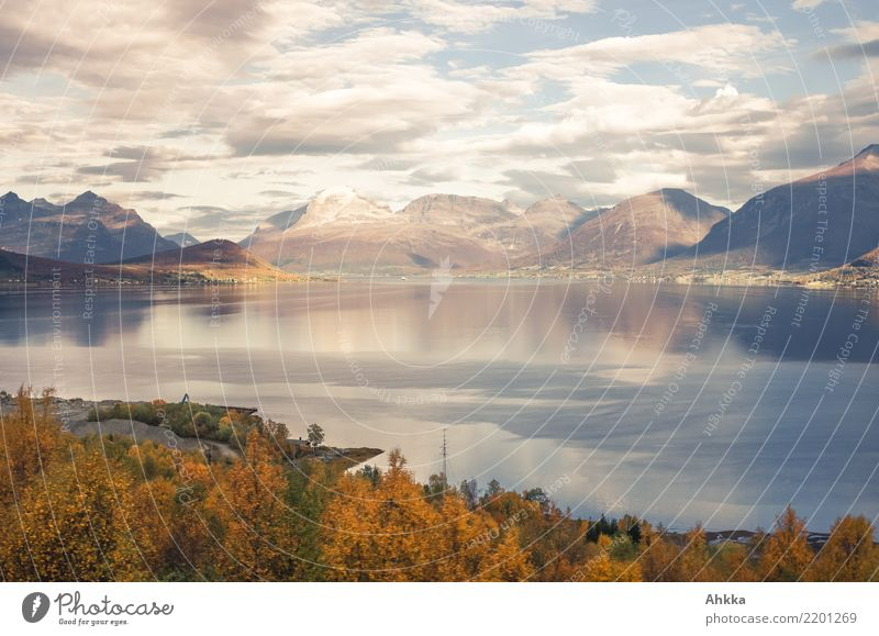 Herbststimmung, Skandinavien, Lofoten, Totale harmonisch ruhig Abenteuer Landschaft Wolken Berge u. Gebirge Fjord Ferien & Urlaub & Reisen Horizont Idylle rein