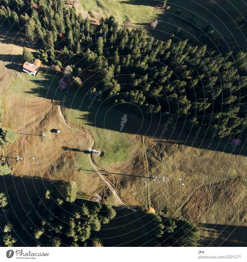 Gondelbahn von oben Natur Sommer Landschaft ruhig Wald Berge u. Gebirge Leben Lifestyle Herbst Wiese Sport Freiheit fliegen Ausflug Freizeit & Hobby Luft