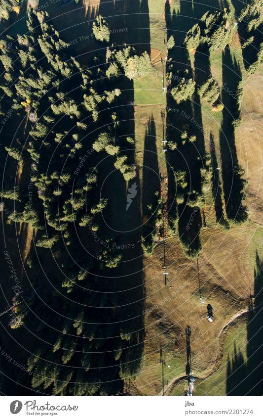 Vogelperspektive auf die Wispile-Gondelbahn Natur Sommer Landschaft ruhig Wald Berge u. Gebirge Leben Lifestyle Herbst Wege & Pfade Wiese Sport Freiheit fliegen