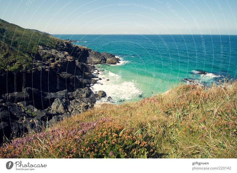 aussichten Natur Wasser Himmel Blume Meer Pflanze Ferne Wiese Gras Landschaft Küste Wellen Wetter Umwelt Horizont Felsen