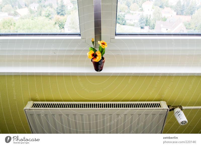 Fenster, Blume, Heizung Einsamkeit Wand Mauer Häusliches Leben Sehnsucht Aussicht Fernweh Fensterscheibe Heizkörper Blumentopf Fensterbrett Fensterblick