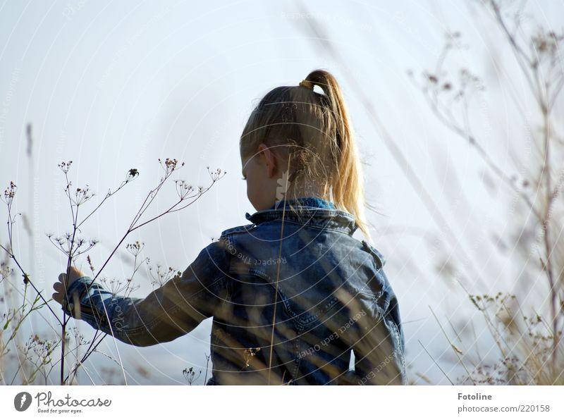 spielen in Freiheit Mensch feminin Kind Mädchen Kindheit Haut Kopf Haare & Frisuren Gesicht Auge Ohr Rücken Arme Hand Finger Umwelt Natur Pflanze Himmel