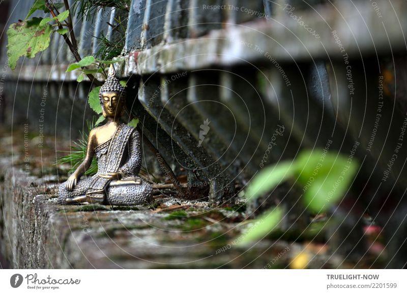 Buddha auf alter Mauer vor altem Eisenzaun meditierend grün Erholung ruhig dunkel Wand Traurigkeit Liebe Kunst Glück grau leuchten träumen dreckig