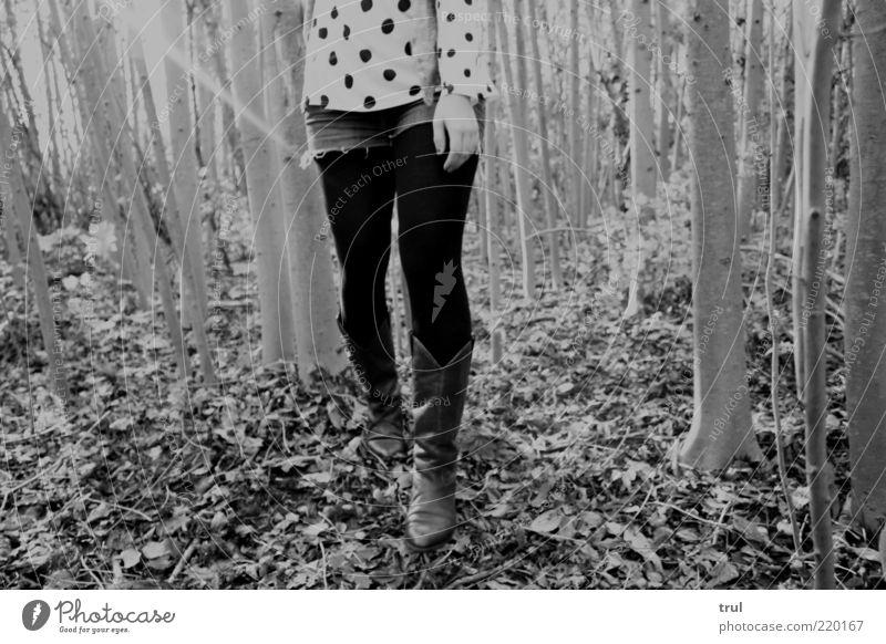Pünktchen im Wald feminin Frau Erwachsene Hand Beine 1 Mensch Natur Sonnenlicht Herbst Baum Blatt T-Shirt Jeanshose Strumpfhose Punkt Stiefel Holz gehen wandern