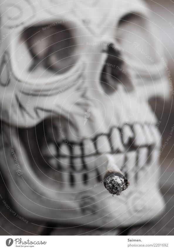 Sucht Raucher rauchen nikotin Zigarette Schädel Totenkopf gefgedreht Farbfoto Zähne augenhöhle asche Überschwemmung sucht tot Tod genussmittel