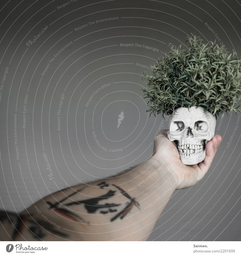 Sein oder Nichtsein vergänglich Hand verstörend abstrakt skurril dramatisch Spannungsbogen Theater philosophieren Philosophie denken halten Zähne Gebiss