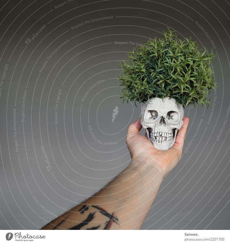 Sein Totenkopf Schädel Tod leben pflanze Kreislauf Arme Tattoo Tätowierung Gebiss Zähne halten denken Philosophie philosophieren Theater Spannungsbogen