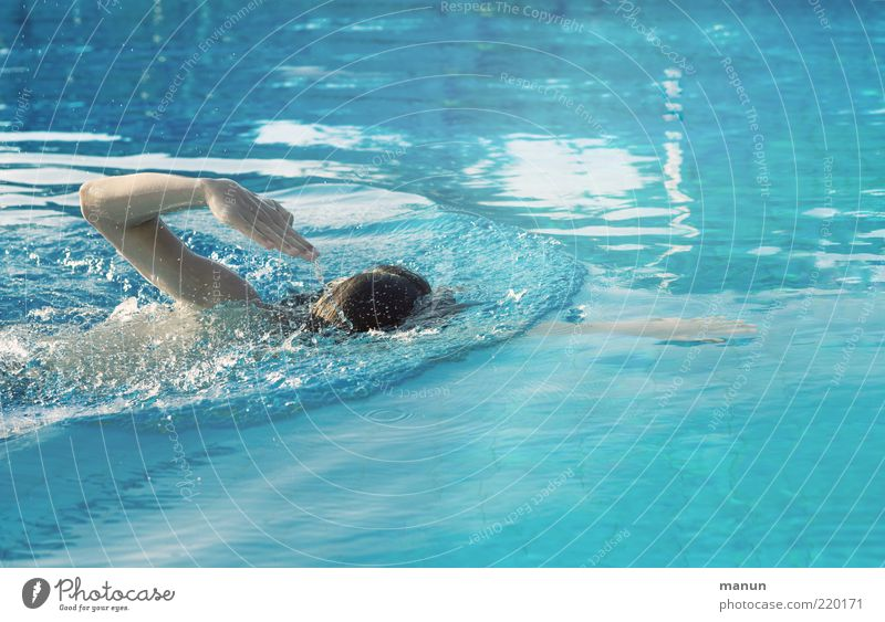 Kraul Mensch blau Leben Sport Bewegung Kraft Freizeit & Hobby Rücken Arme Schwimmen & Baden maskulin Coolness Schwimmbad Schwimmsport tauchen Fitness