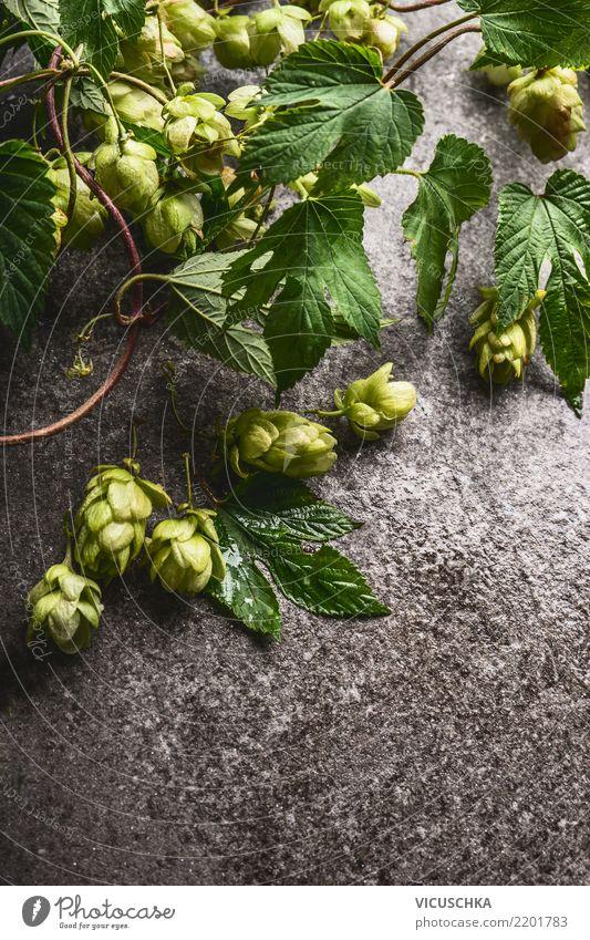 Hopfen auf rustikalem grauem Hintergrund Lebensmittel Bier Stil Design Oktoberfest Natur Pflanze Nutzpflanze Hopfenblüte Hopfenblatt Zutaten Heilpflanzen