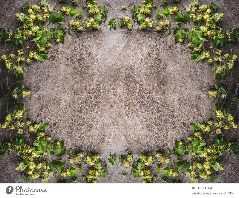 Hopfen Rahmen auf rustikalem Hintergrund Stil Design Leben Natur Pflanze Blatt Blüte Dekoration & Verzierung Ornament retro Hopfenblüte Hopfenblatt