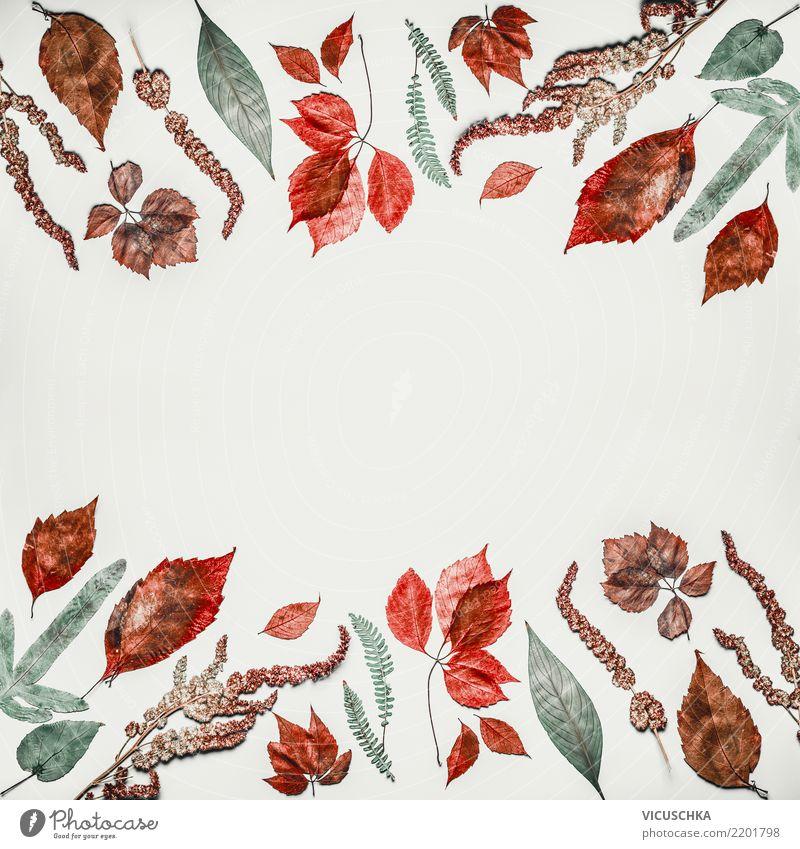 Herbstlicher Muster Hintergrund Rahmen mit Herbstlaub Stil Erntedankfest Natur Pflanze Blatt Dekoration & Verzierung trendy Design arrangiert Hintergrundbild