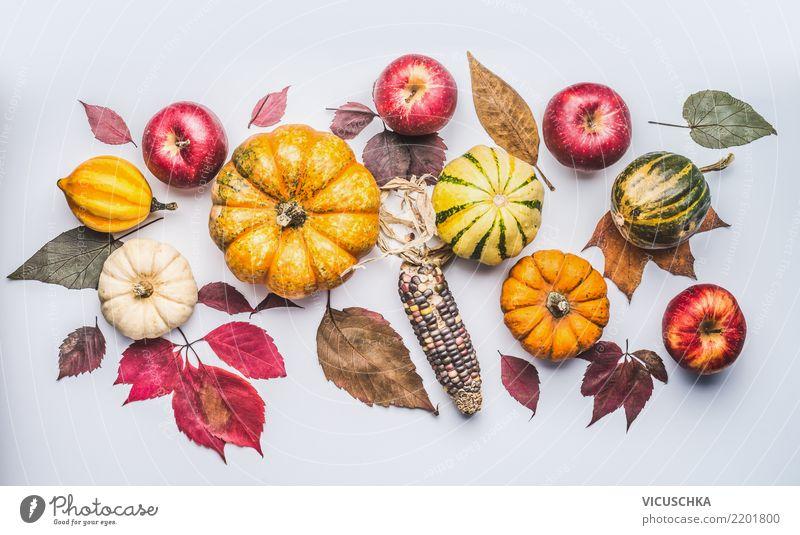 Autumn mit Kürbis, Äpfel und Blätter Gemüse Apfel Stil Design Erntedankfest Halloween Natur Herbst Pflanze Dekoration & Verzierung Ornament Composing Hipster