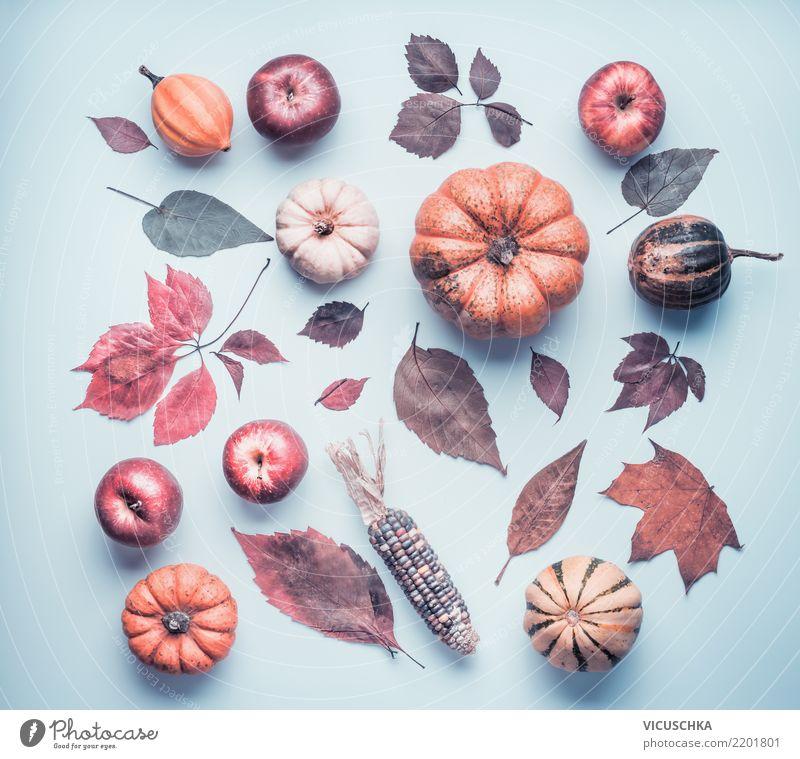 Herbst Composing mit Kürbis, Äpfel und buntes Laub Natur Pflanze Blatt Stil Design retro Dekoration & Verzierung Kreativität Apfel Stillleben herbstlich