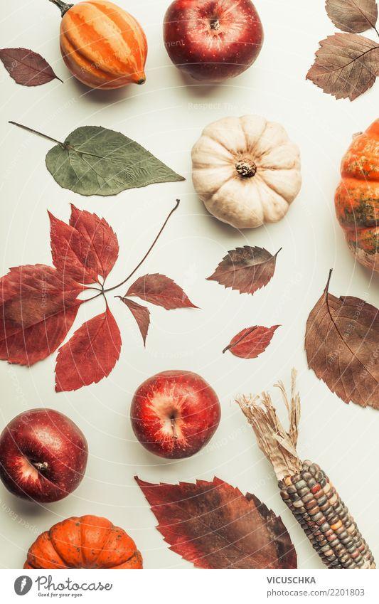 Herbst Composing mit bunte Kürbis Gemüse Apfel Stil Design Dekoration & Verzierung Erntedankfest Halloween Natur Blatt Maiskolben Stillleben Farbfoto