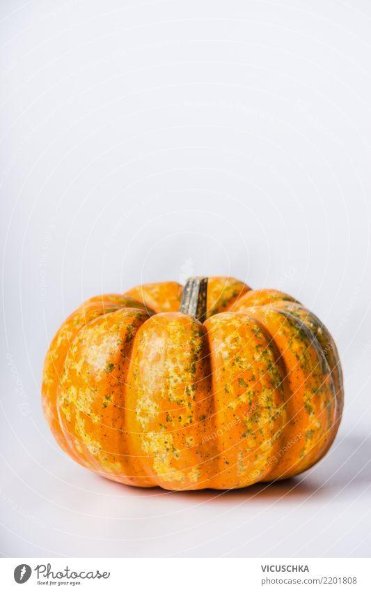 Kürbis Lebensmittel Gemüse Ernährung Bioprodukte Vegetarische Ernährung Diät Stil Design Gesunde Ernährung Erntedankfest Halloween Natur Hintergrundbild