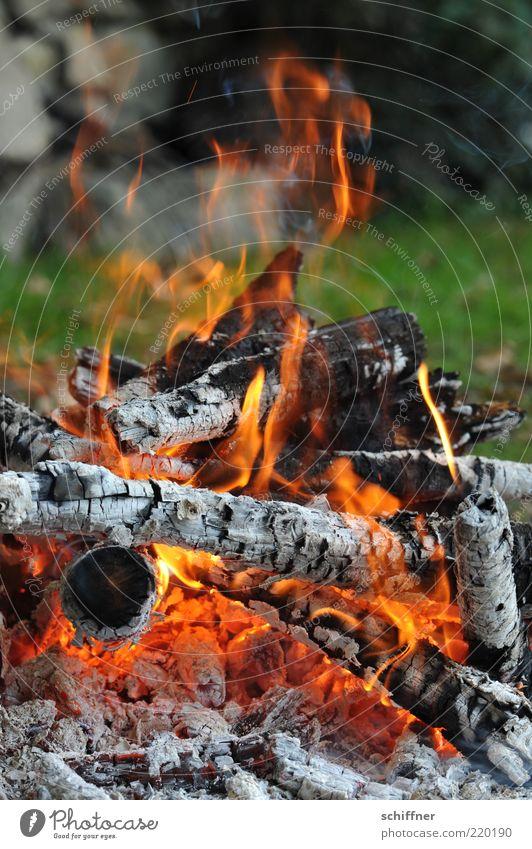 Light my fire Wiese Holz Wärme Feuer heiß Rauch Grillen brennen Flamme glühen Haufen Feuerstelle heizen Brandasche Kohle Glut