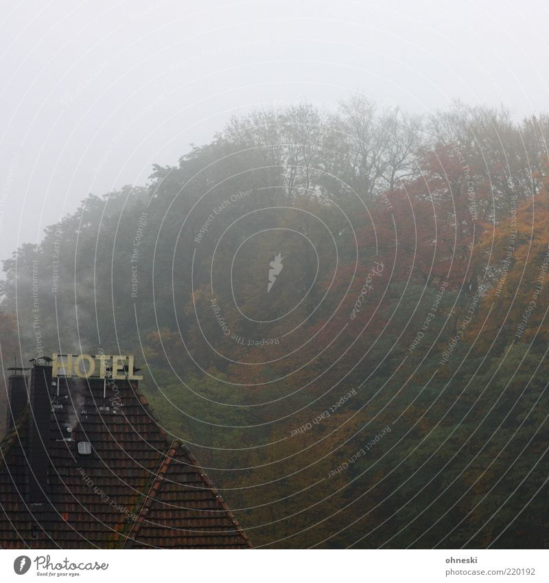 Shining Haus Wolken Einsamkeit Wald Herbst Nebel Schilder & Markierungen Schriftzeichen Dach Hotel gruselig feucht schlechtes Wetter Morgendämmerung feuchtkalt