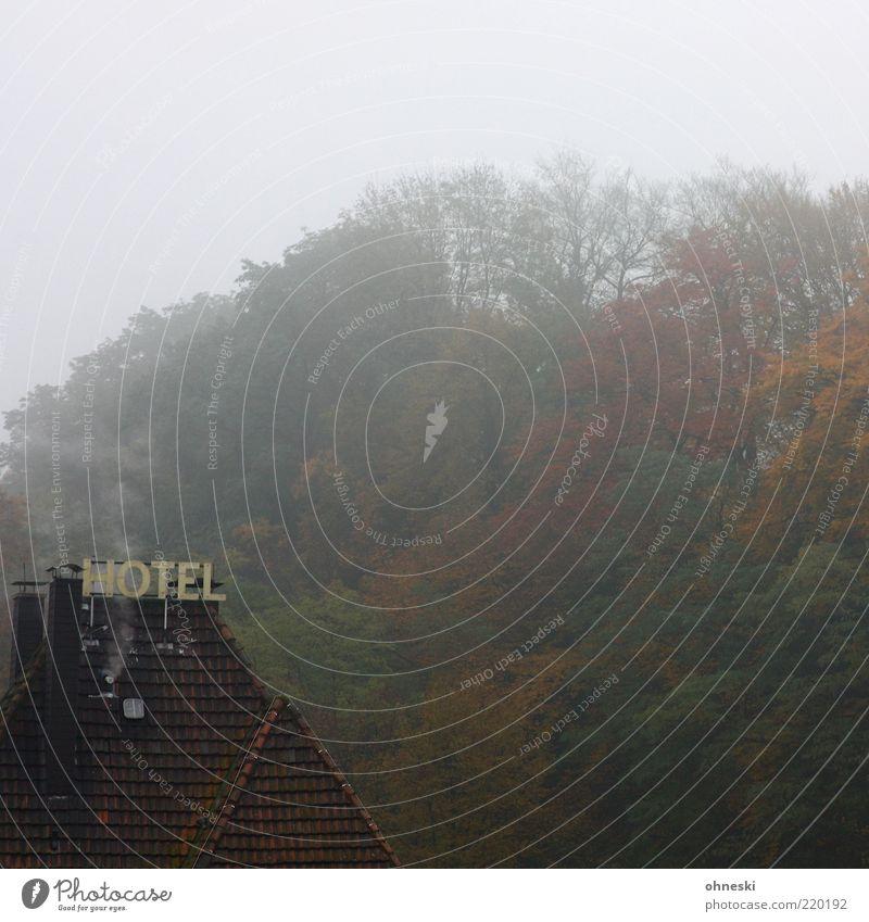 Shining Wolken Herbst schlechtes Wetter Nebel Wald Haus Hotel Dach Schriftzeichen Schilder & Markierungen Einsamkeit gruselig feuchtkalt Farbfoto