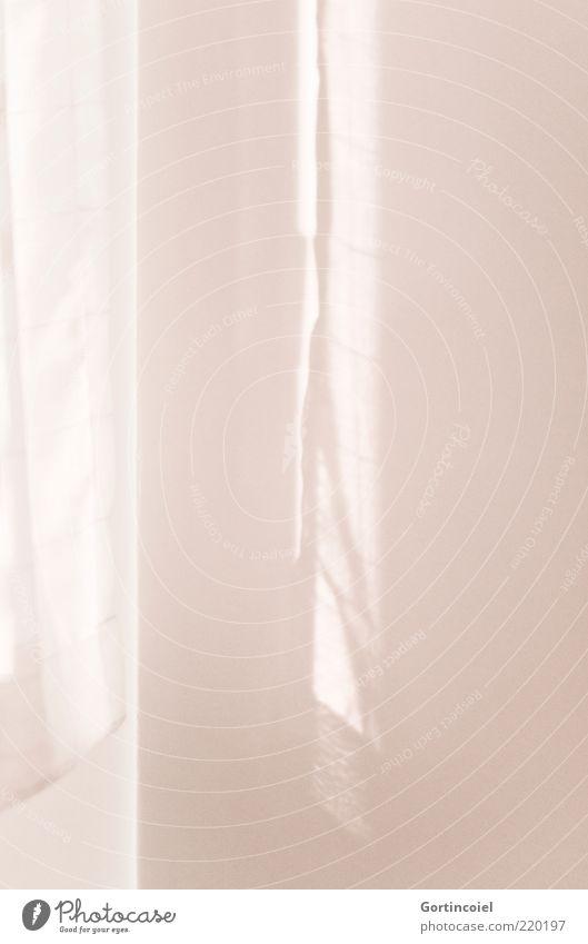 Lichtschatten Mauer Wand Fenster hell rosa Lichtschein Vorhang Farbfoto Gedeckte Farben Innenaufnahme Muster Lichterscheinung Sonnenlicht Schattenspiel weiß