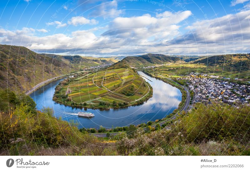 Moselschleife bei Bremm Ferien & Urlaub & Reisen Sightseeing Natur Landschaft Wasser Himmel Wolken Horizont Herbst Schönes Wetter Pflanze Nutzpflanze Weinberg