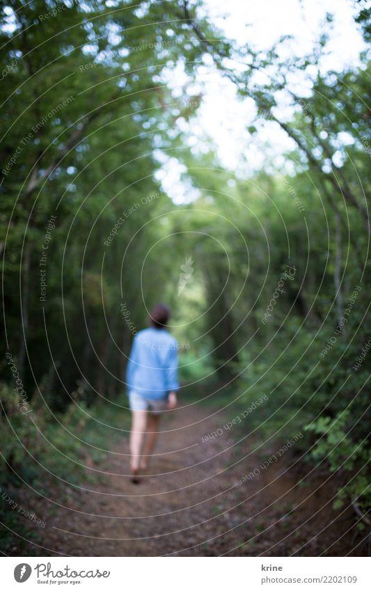 Ins Ungewisse II feminin Junge Frau Jugendliche 1 Mensch 18-30 Jahre Erwachsene 30-45 Jahre Natur Wald Urwald gehen wandern bedrohlich natürlich positiv Neugier